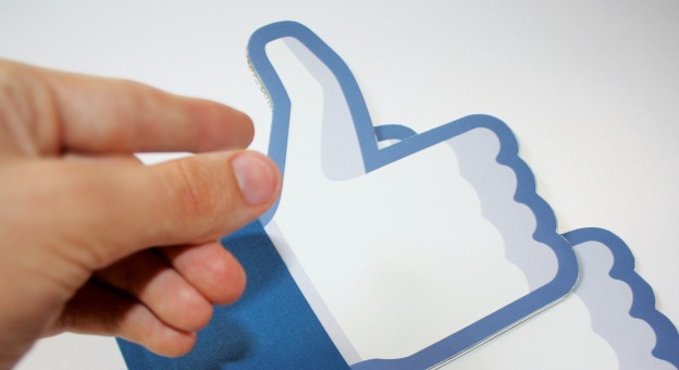 facebook_croco